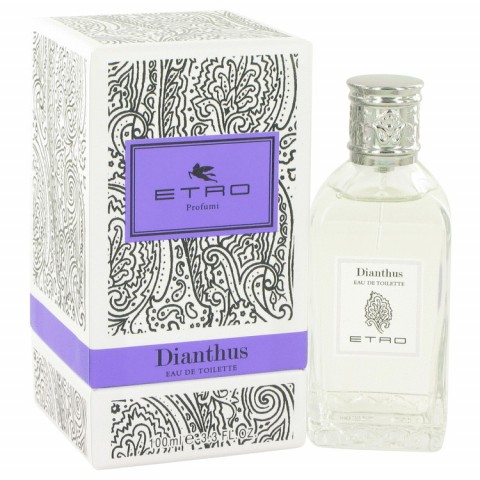 Dianthus - Etro