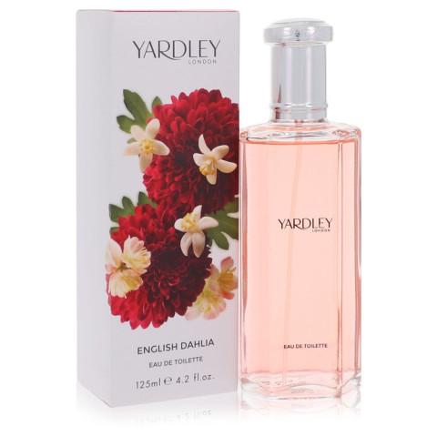 English Dahlia - Yardley